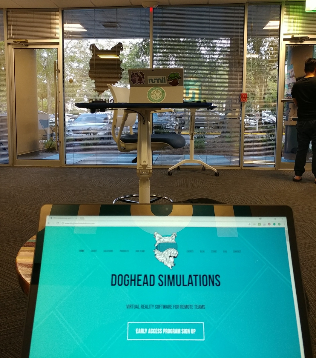 Farewell to My Startup: Doghead Simulations